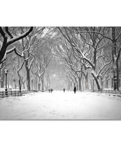 Snow on Poet Walk Central Park Art Print Poster NY MP-1146