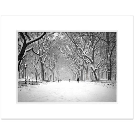 Snow on Poet Walk Central Park Art Print Poster NY MP-1146 Mat White