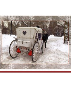 White Carriage Central Park NY Christmas Cards CGC8810