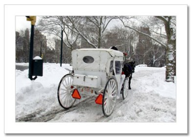 White Carriage Central Park NY Christmas Card HPC2809