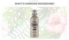 http://thebacklabel.com/what-is-hawaiian-moonshine/#.WKe0jBIrLR0