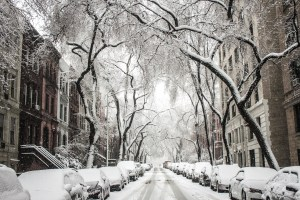 Snow-covered street in Brooklyn.