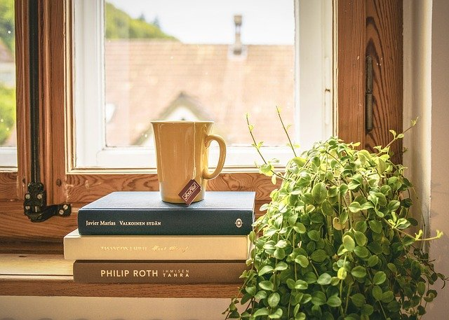 A cup of tea on 3 books in front of a window.