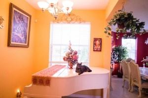 House interior, piano.