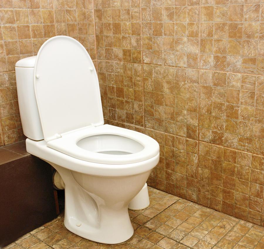 plumber_toilet