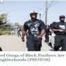 black panthers guns