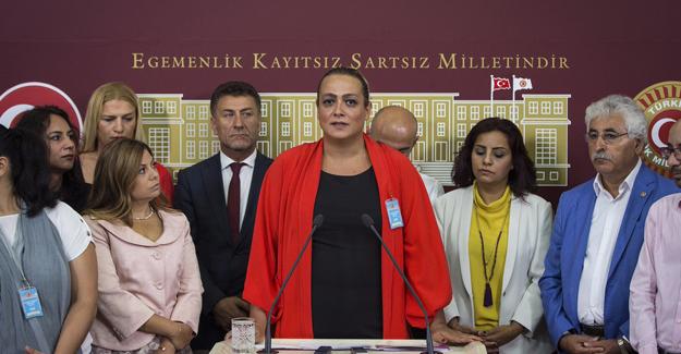 CHP, LGBT'lilerle Meclis'te Açıklama Yaptı