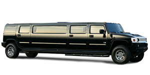 28 PASSENGER LIMO/LOUNGE BUS