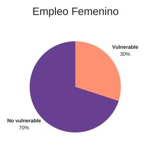empleo mujeres microfinanzas