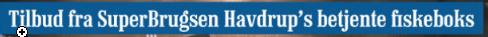 Havdrup's