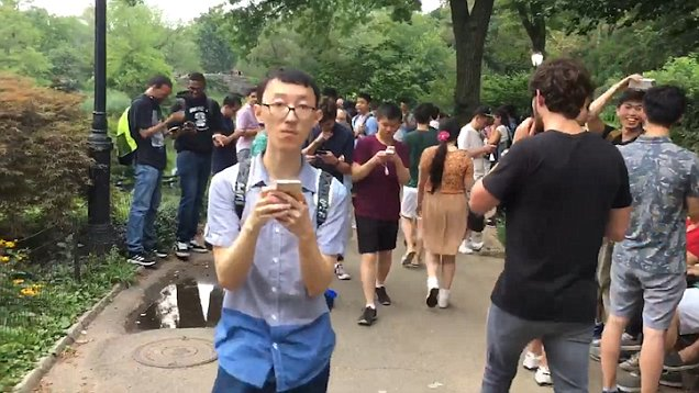 Pokemon Go Taking Over New York