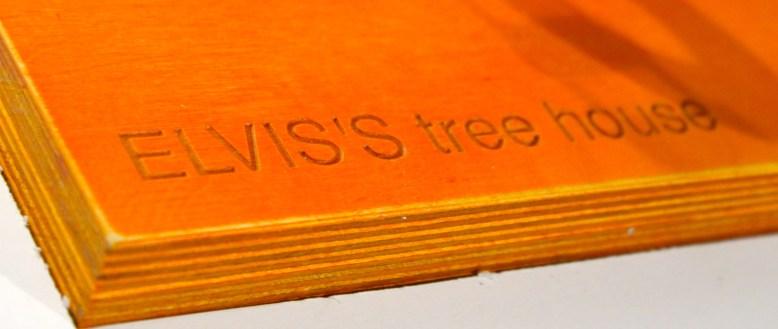 Elvis_treehouse