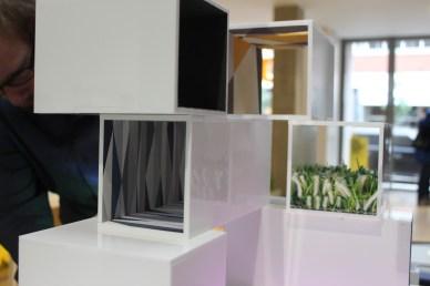 Dexter moran wall cube