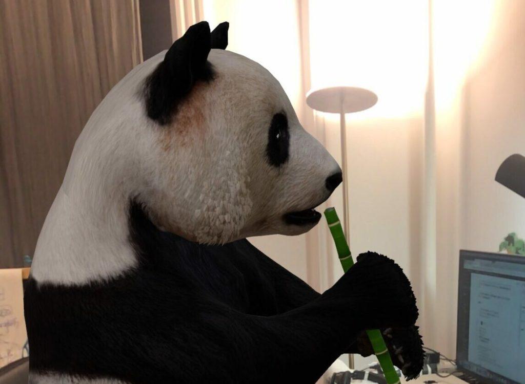 Photo of 3D animal -Giant Panda