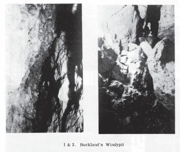 BCRAT3-bucklands