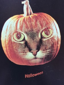 Happy, catty Halloween