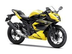 Ninja 250RR Mono Single Cyl