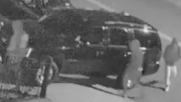 Homicide Archives - NYPD News