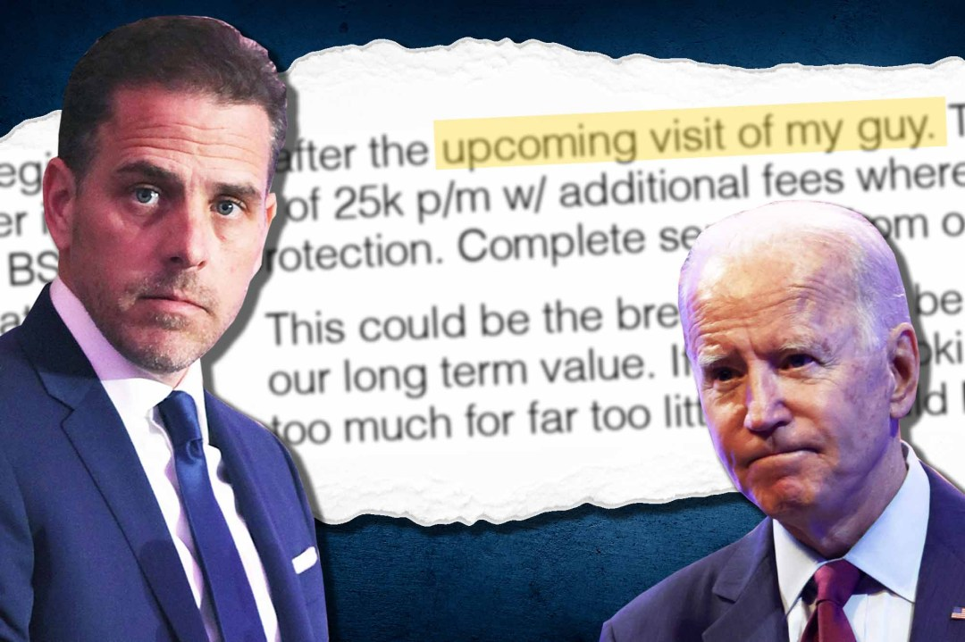 Hunter Biden article
