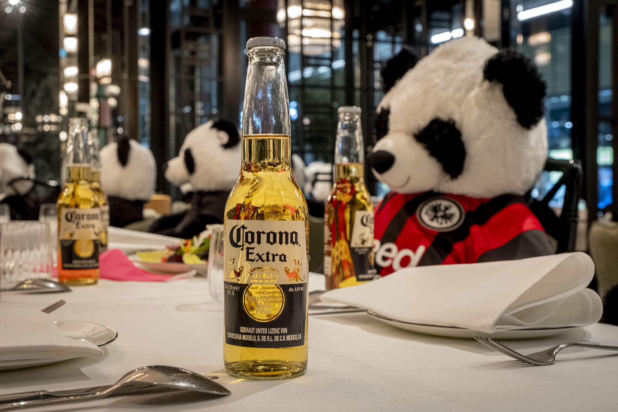 Pandas are bellying up to the bar for beers on COVID-19 lockdown
