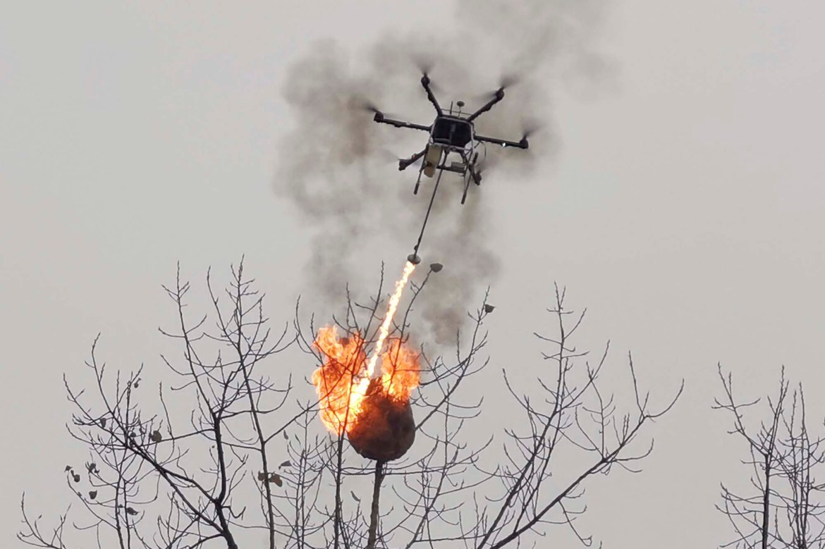 Flame-throwing drones incinerate hornets' nests amid infestation in China 1