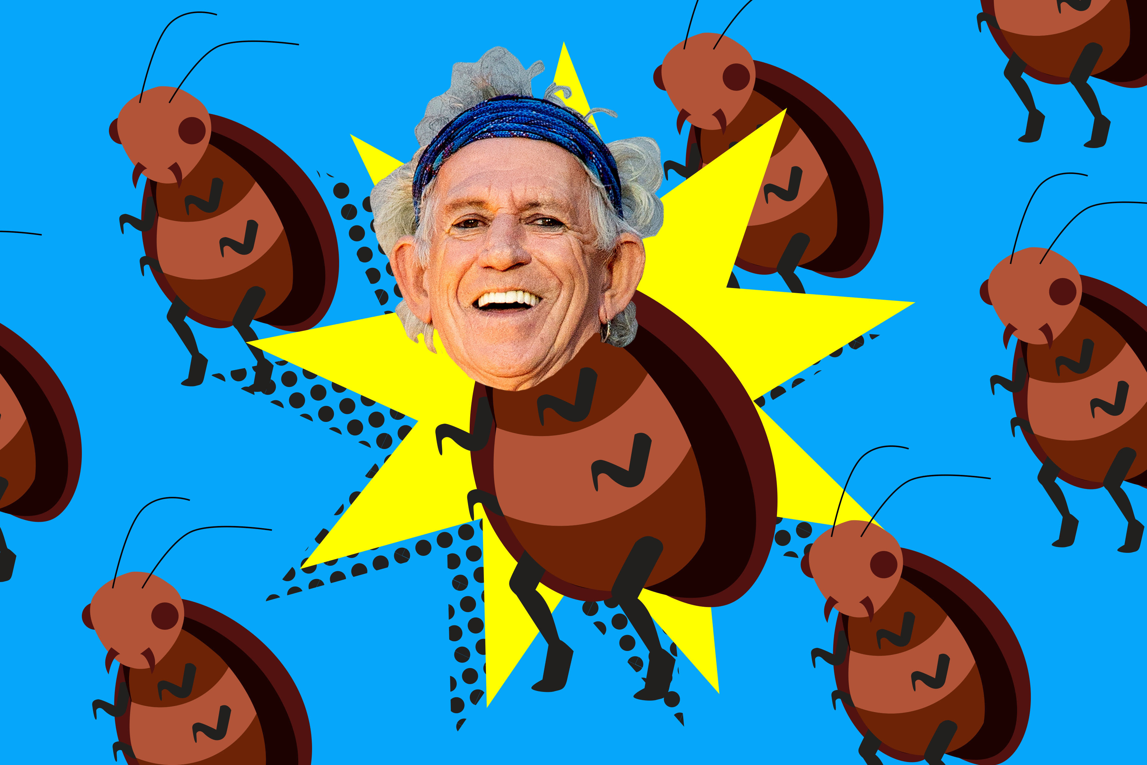 Keith Richards gets cockroach named after him for birthday