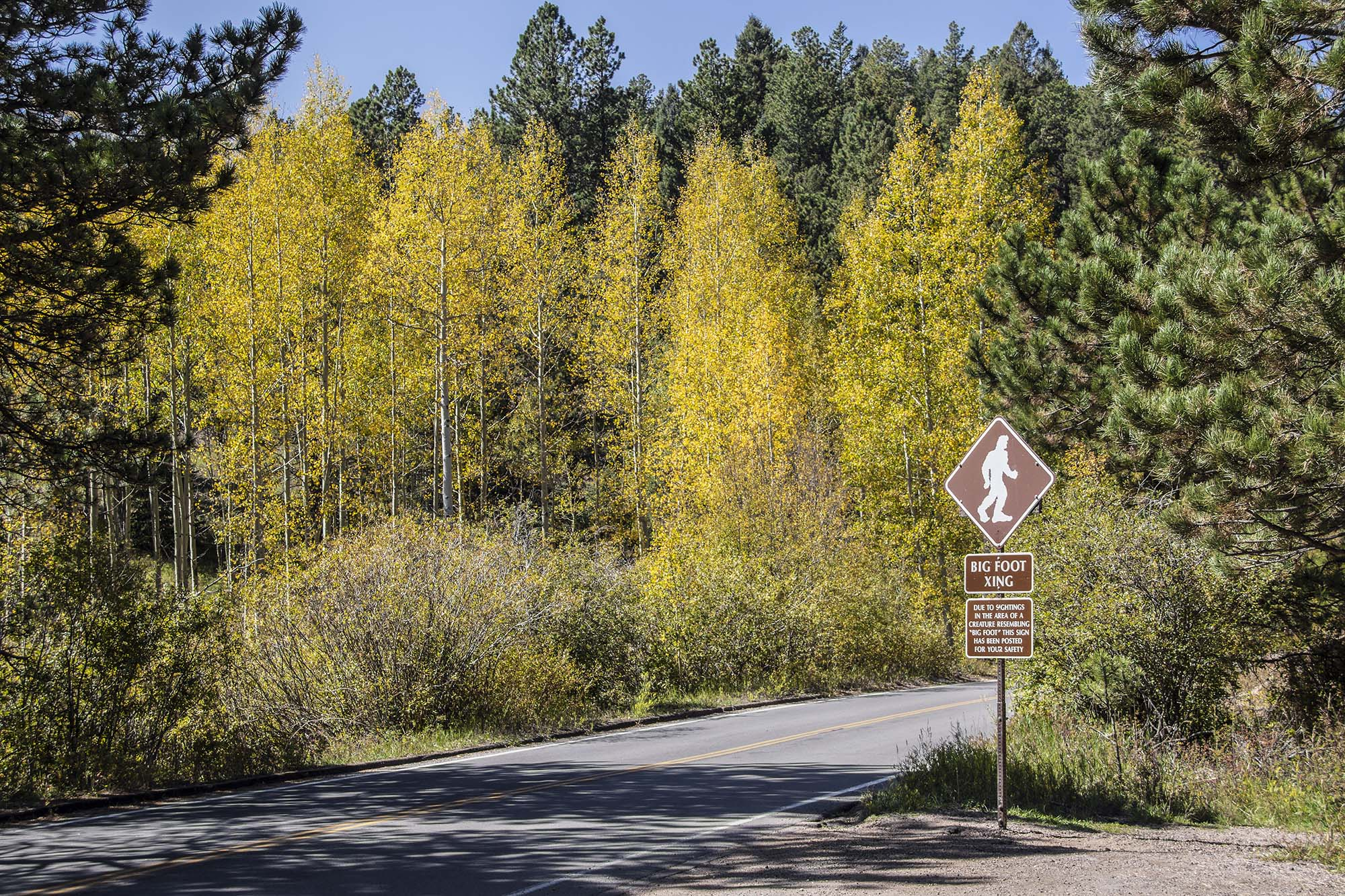 Sign posted on mountain road of Big Foot Xing for tourist safety
