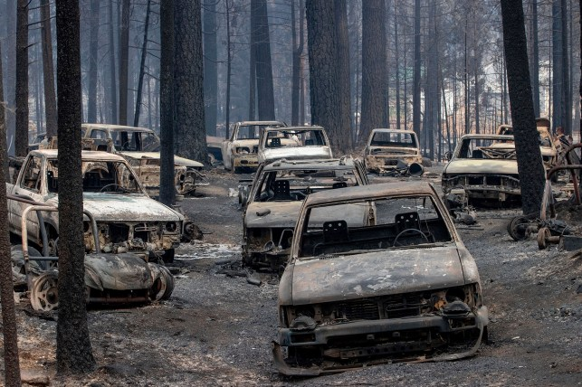 The vehicles that caught fire in Caldore remain on Evergreen Drive in Grizzly Flats, California on Tuesday, August 17, 2021.