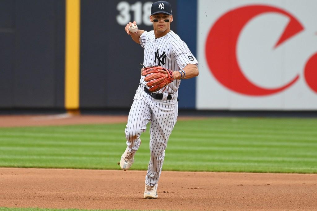 Yankees Andrew Velazquez