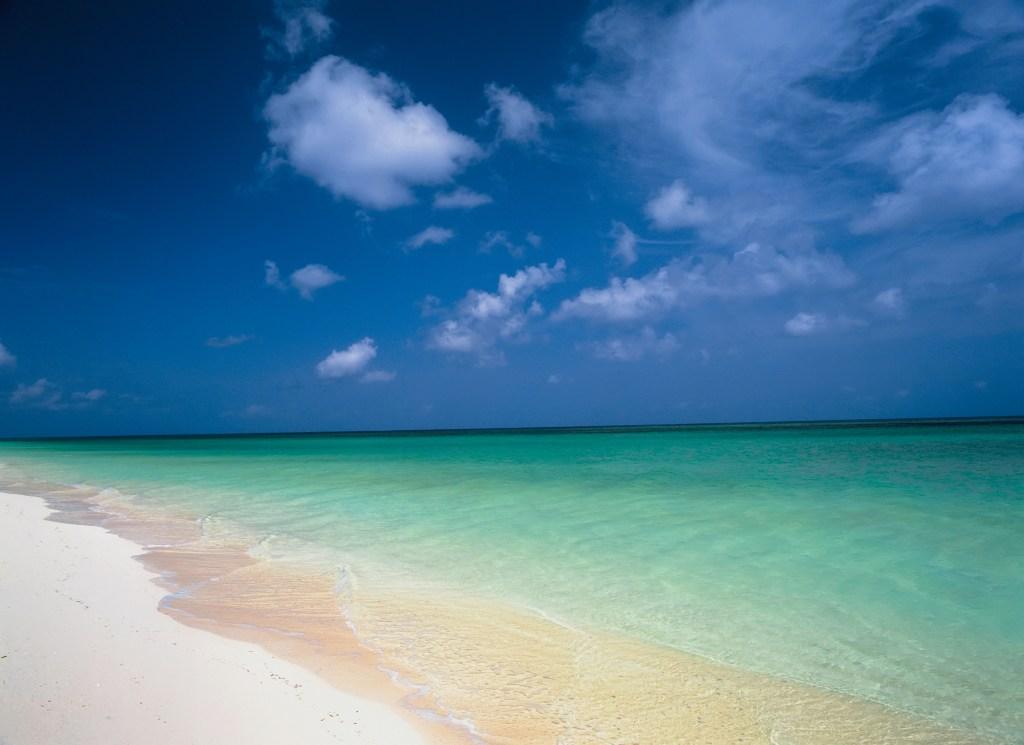 A beach on Parrot Cay.