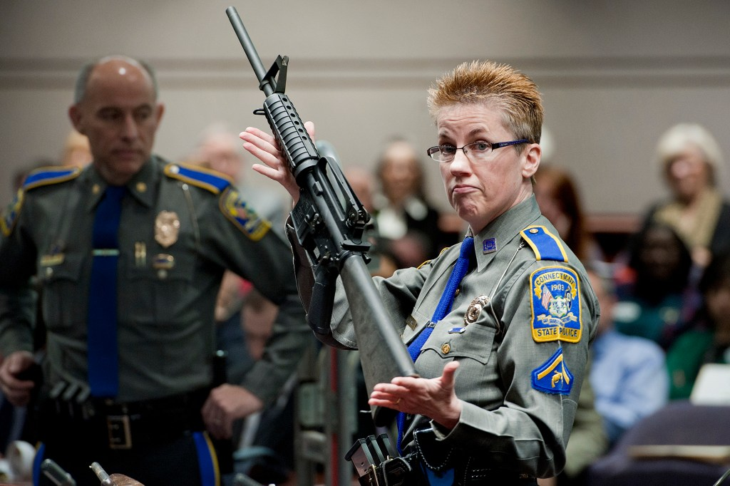 Adam Lanza used a Bushmaster AR-15 rifle in the Sandy Hook School shooting.