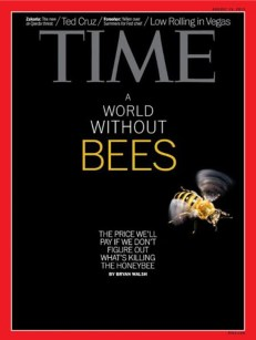 """The media has sounded the alarm about the supposed death of the honeybee. Time magazine in 2013 warned of """"A world without bees."""""""