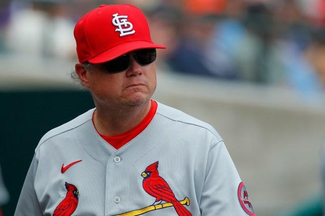 Former Cardinals manager Mike Schildt.