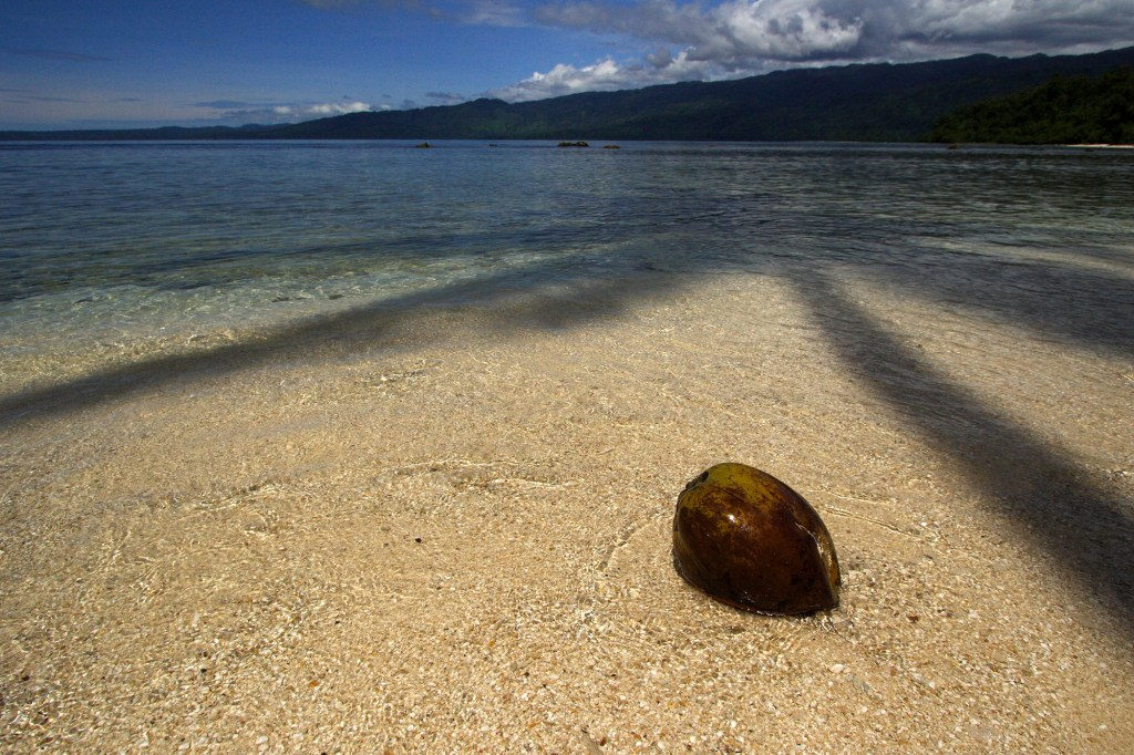 A beach in Pomio, in New Britain, Papua New Guinea, which is where the unlucky travelers landed.