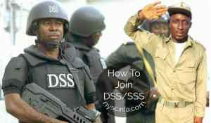 How to join Nigerian DSS