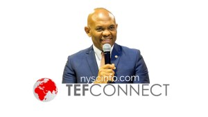 Tony Elumelu Foundation Entrepreneurship Program (TEFEP)