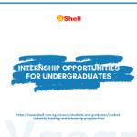 Shell Undergraduate Industrial Training