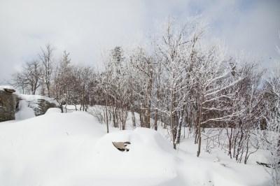 Hunter-Mountain-Valentine's-Day Powder