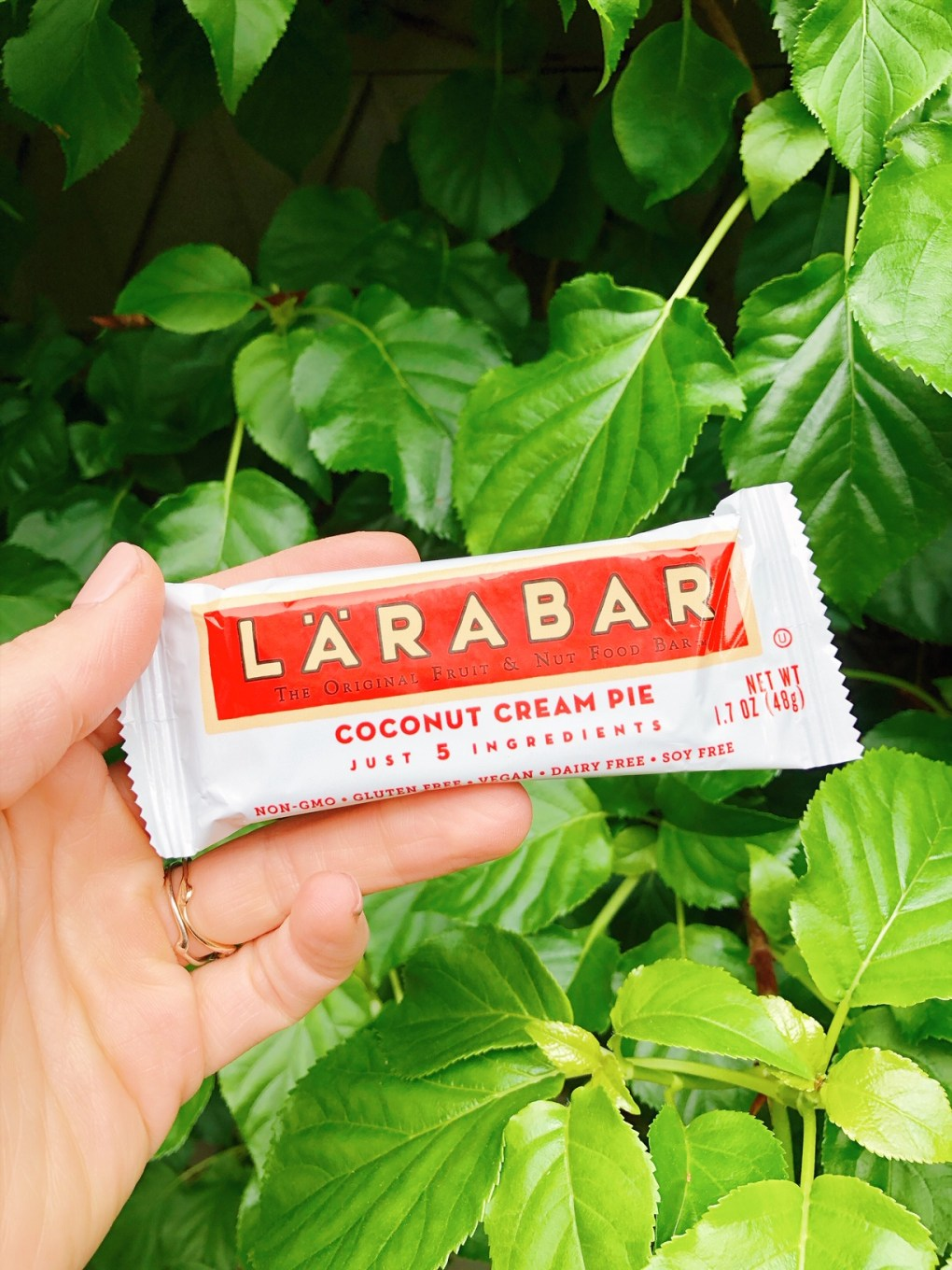 Holding a coconut cream pie lara bar in front of a green bush