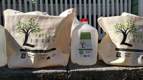 bags-and-water