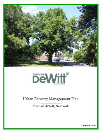 DeWitt cover