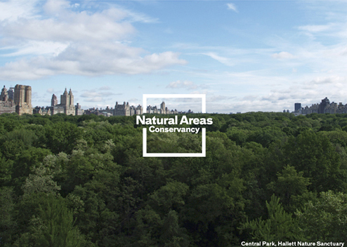 NYC Parks | New York State Urban Forestry Council