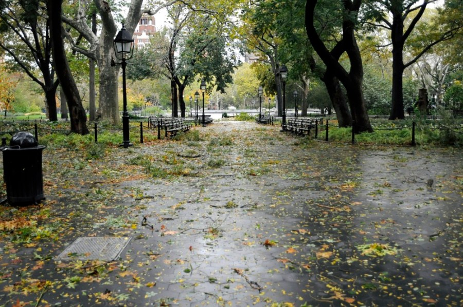 Washington Square Park, fondly referenced as NYU students' campus, is one of the university's many selling points for prospective students.