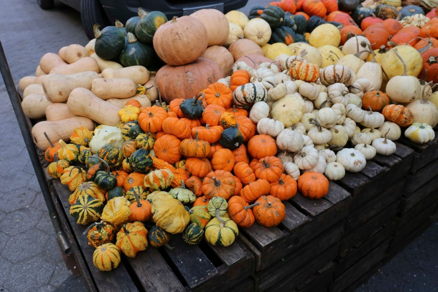 It's October, which means pumpkins and gourds of all shapes and sizes are available at the Union Square Greenmarket.
