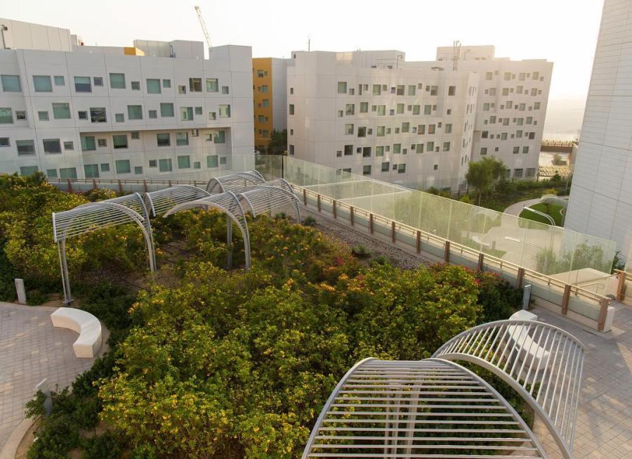 Lack of Academic Freedom Plagues NYU Abu Dhabi