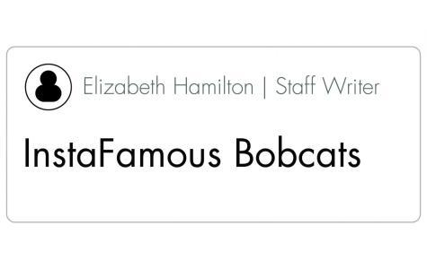 InstaFamous Bobcats