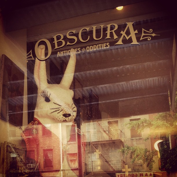 Storefront of Obscura Antiques and Oddities, featuring a taxidermied rabbit. Located in the East Village, Obscura is one of several unique antique stores around NYU.