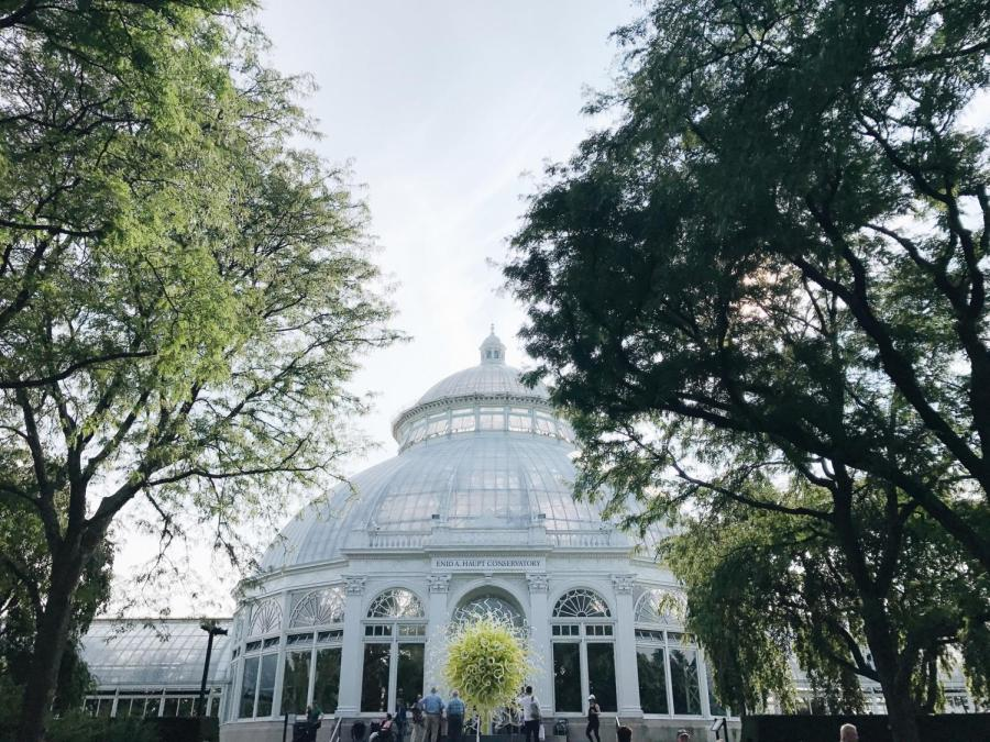 The Enid A. Haupt Conservatory in the New York Botanical Garden. This garden in the Bronx is another great spot to explore in the spring.