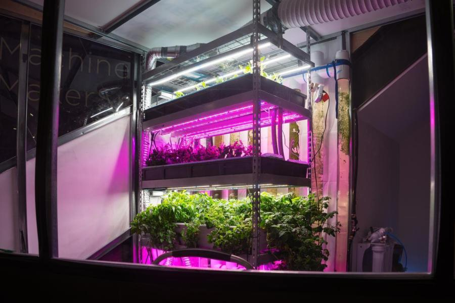 A prototype for the urban vertical farm project.