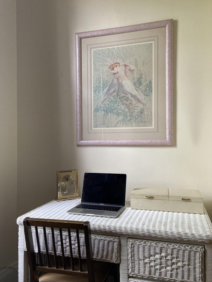 A white desk is centered below a painting of two birds. Alejandro Villa Vasquez shares his zoom set up. (Photo by Alejandro Villa Vasquez)